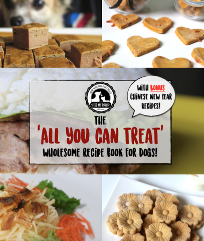 Feed My Paws 'All You Can Treat' E-Book (includes CNY recipes!)