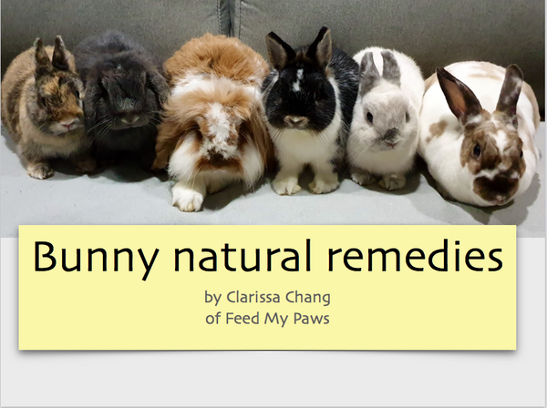 Bunny Natural Remedies