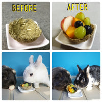 DIY Fruit Bowl (Buns, Piggies) (Can be mailed)