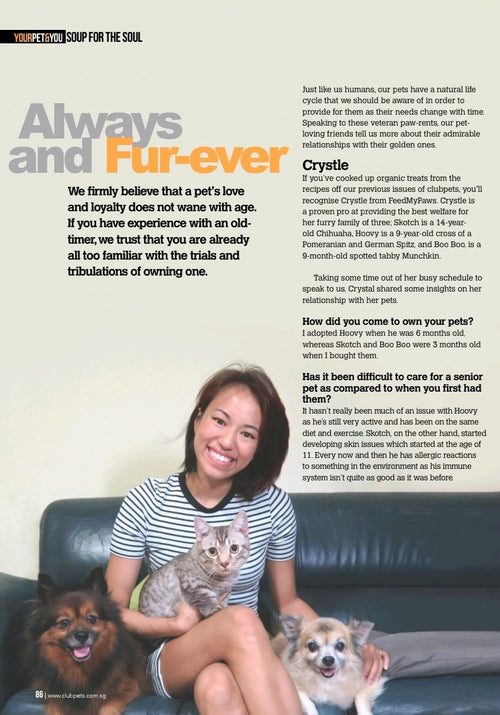 Club Pets New Paper Media Feature with Crystle from Feed My Paws and Doggies and cats