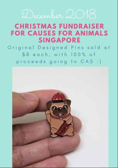 Causes for Animals CAS and Feed My Paws Fundraiser