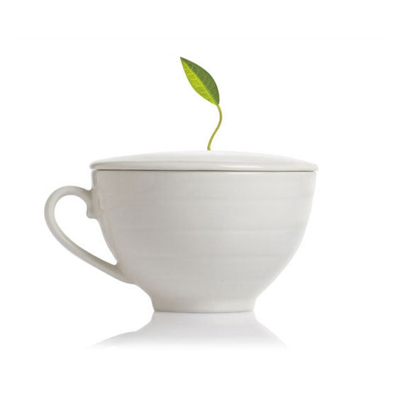 Porcelain Tea Cup White - Zouf.biz