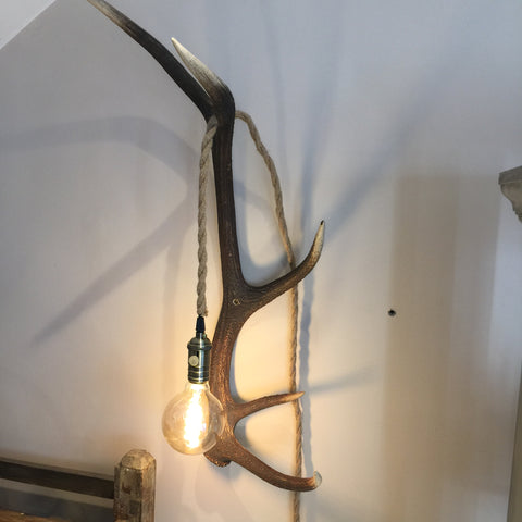 Antler wall light with Edison bulb