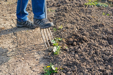 Soil Texture and Conditions