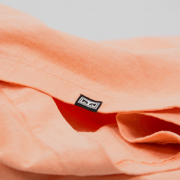 Obey Heavyweight Eyes Box Tee - Apricot 2