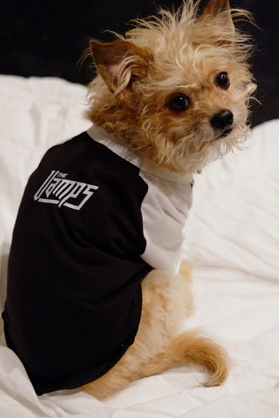 Dog Raglan - The Vamps Official Online Store - 1