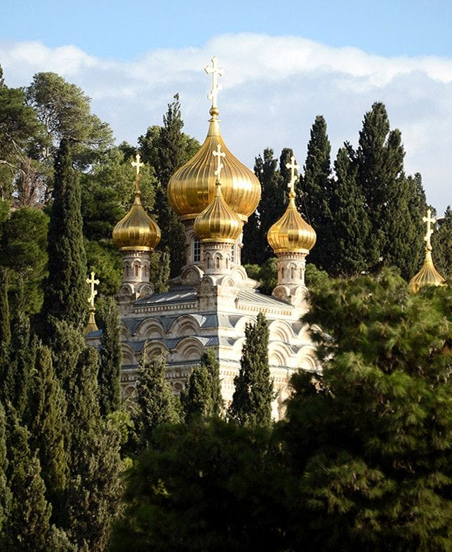 Essential Oil: Mount of Olives