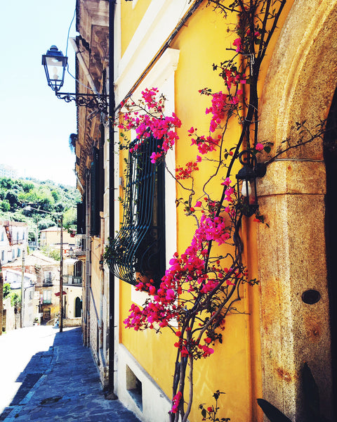 bougainvillea on yellow house in naples, italy