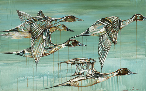Pintails Flight
