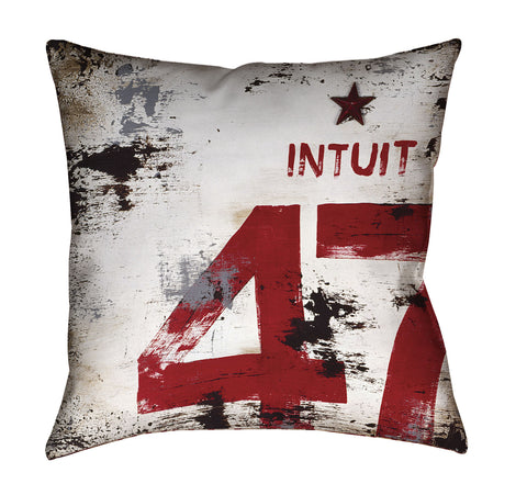 """Skillset Of An Elevated Mind: Intuit"" Outdoor Throw Pillow"