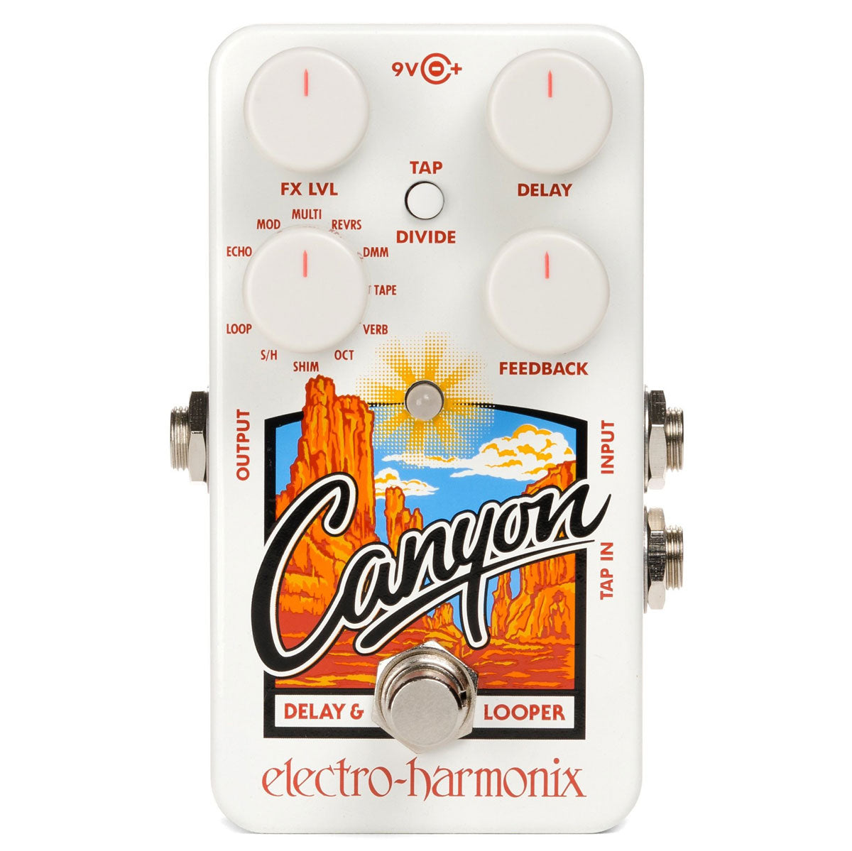 Electro Harmonix - Canyon - Delay And Looper | Lucky Fret Music Co.