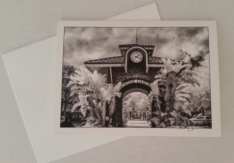 Anna Cary Photography Note Cards/Postcards - Our Nation's Creations