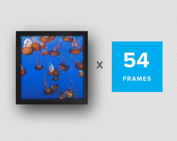 Fotobit 4x4 Designer Pack (54 Frame Kit)