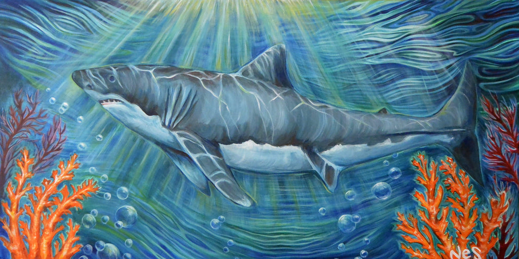 The Shark on canvas