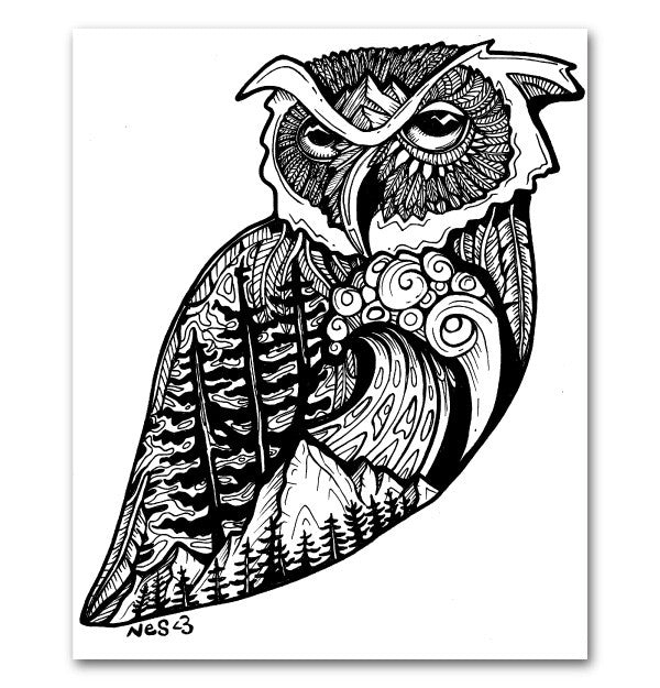 West Coast Owl