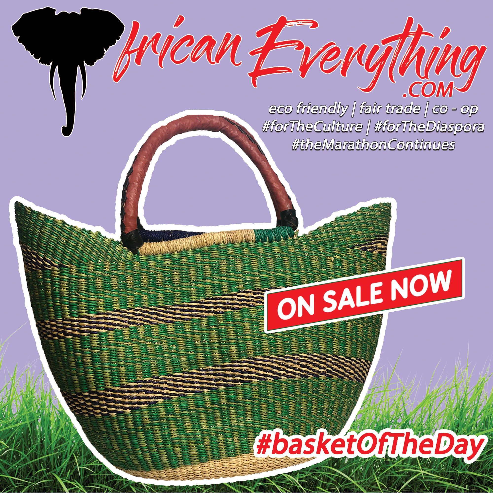 Basket Of The Day