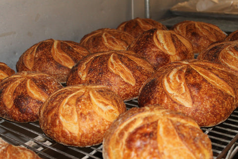 Sourdough Round (Boule) Handmade Baked fresh daily