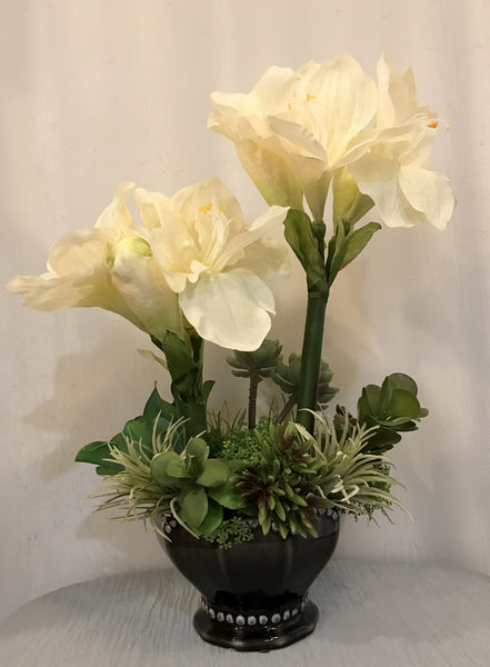 Amaryllis and Succulent Plants Arrangement in Ceramic Vase, Cream and Green, Office Home Indoor Decor Centerpiece, Handcrafted at the Floral Mart