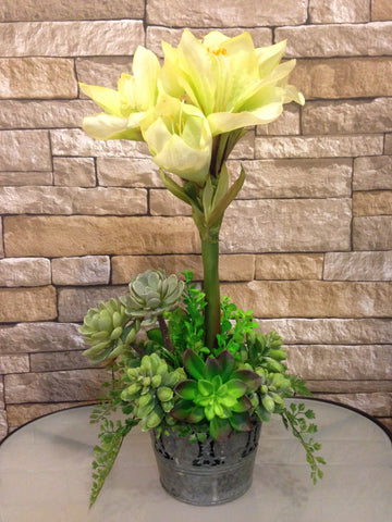 Silk Amaryllis and Artificial Succulent Centerpiece, Two tone Green, Office Home Decor Accent, Handcrated at the Floral Mart