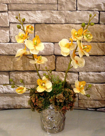 Phalaenopsis Orchid and Succulent Plant Arrangement in Silver Ceramic Vase, Yellow and Green, Office Home Decor Plant, Handcrafted at the Floral Mart