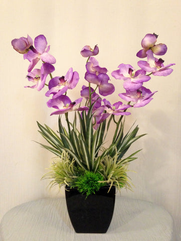Vanda Orchid and Greenery Plant Arrangement in Ceramic Vase, Purple and Green, Home Office Decor Plant, Handcrafted at the Floral Mart