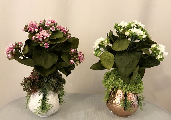 Mini Kalanchoe in Leaf Ceramic Vase, Set of 2, Pink and White Color, Office Home Indoor Decor Plant, Handcrafted at The Floral Mart