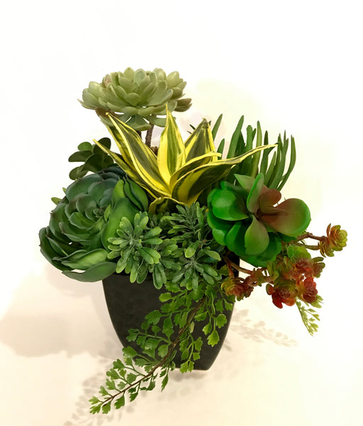 Artificial Agave, Spike Aeonium, Hen&Chick and Assorted Succulent Arrangement in Black Ceramic Container, Green and Burgundy, Indoor Decor Plant, Handcrafted at thefloralmart