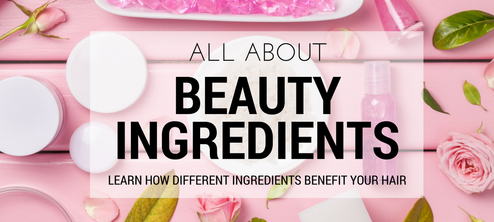 Learn how different beauty ingredients benefit your hair.