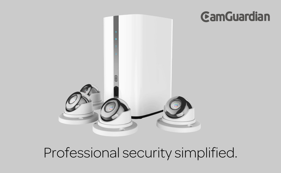 Professional security simplified.