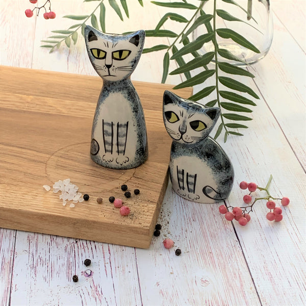 Salt & Pepper Cat - Grey Tabby - the source