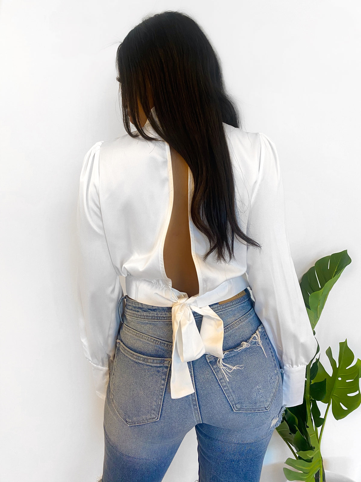 white silk top, front opening, high neck, long sleeve, crop top, open back