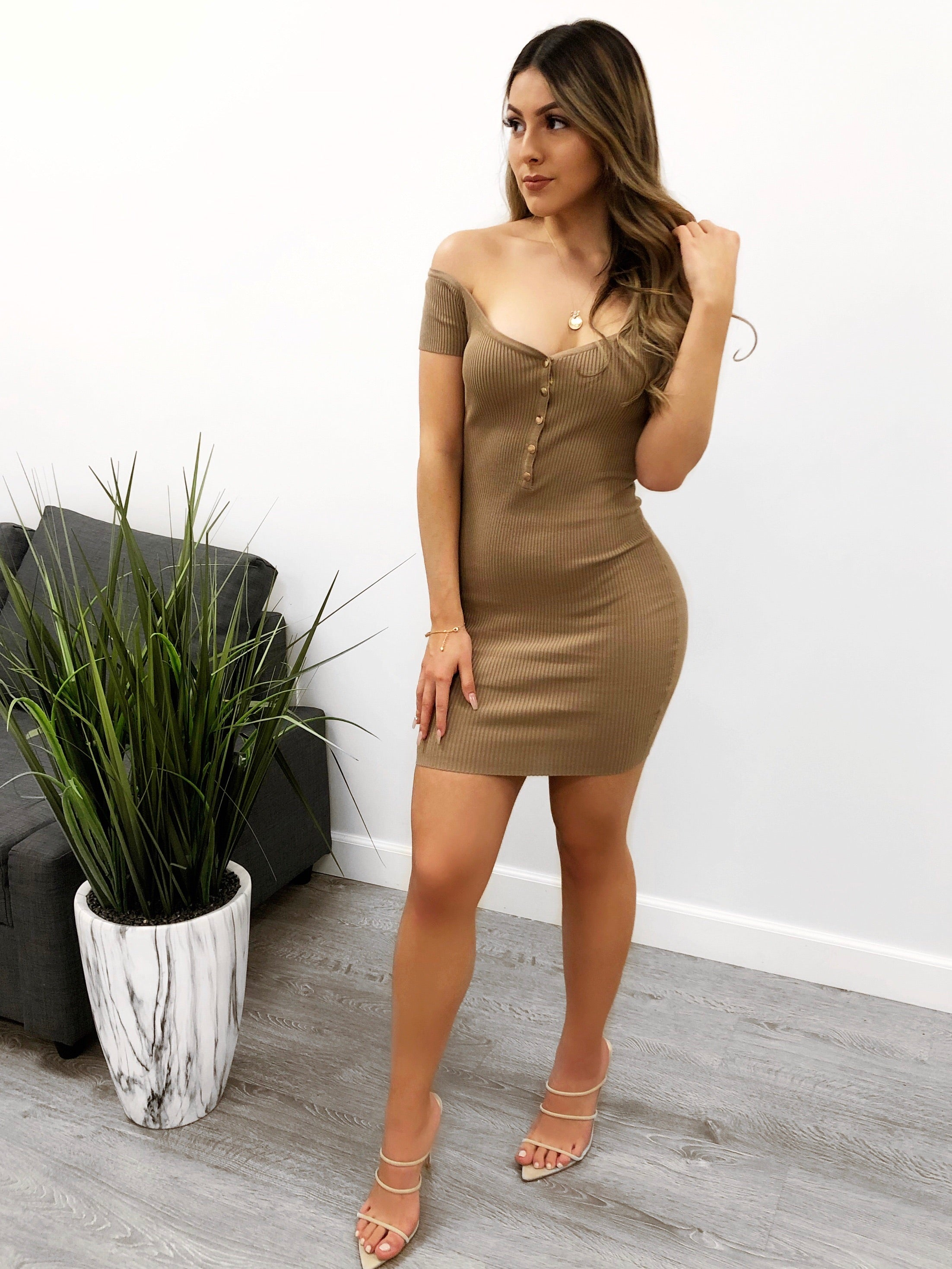 Naty Dress (Taupe)
