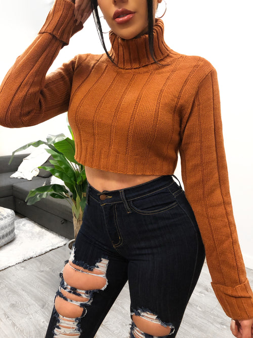 Ary Sweater (rust)