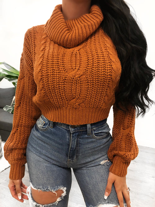 Cropped turtle neck sweater, loose fitting sleeves and sweater.