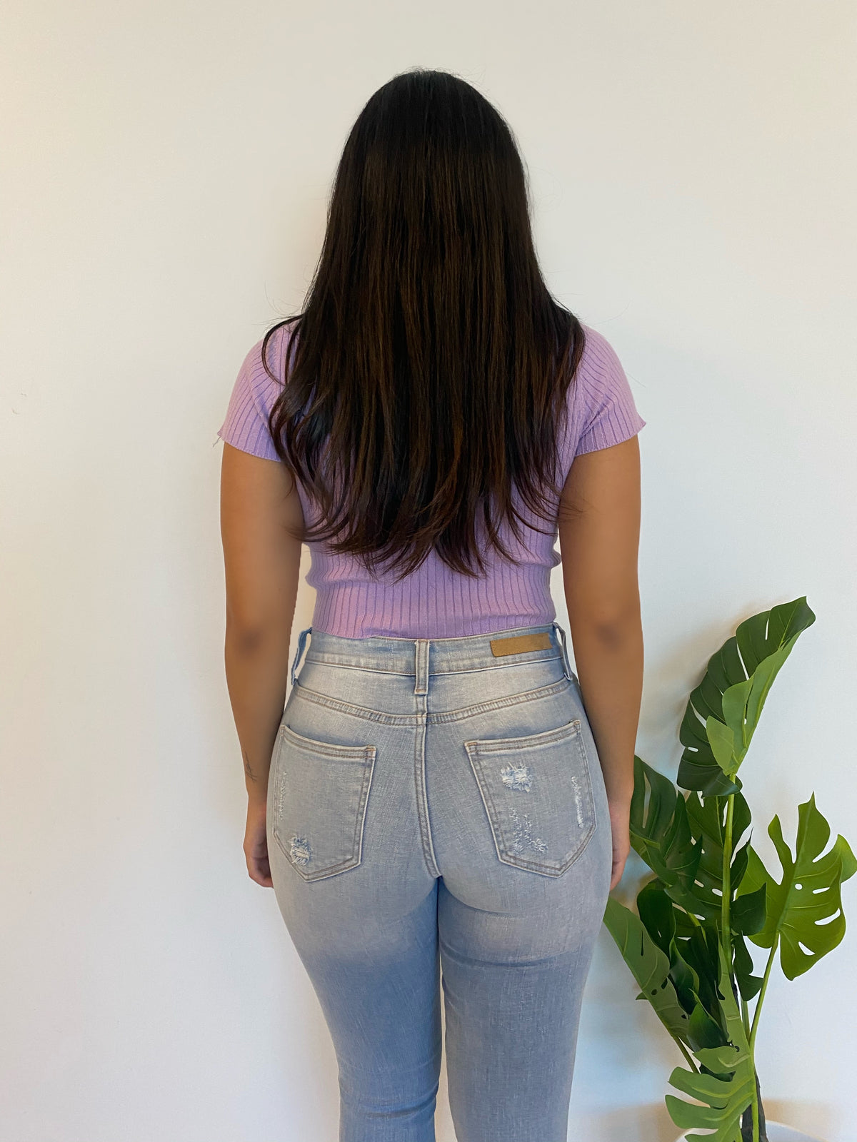 Alice Crop Top (Lavender)