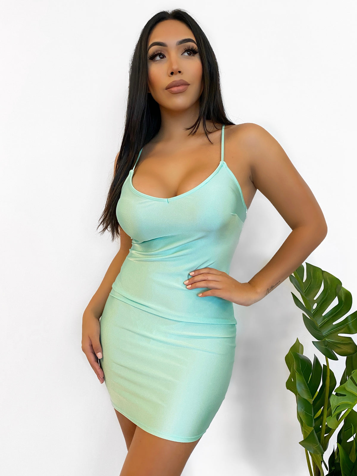 Danny Dress (Mint)