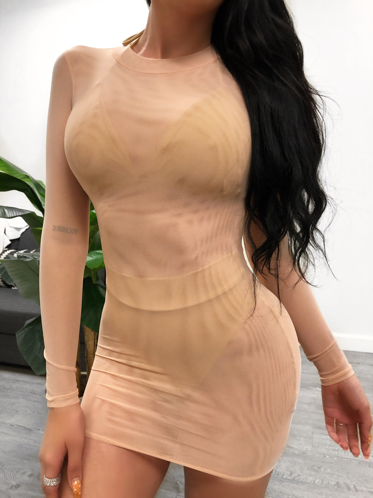 nude color, skin tight mesh dress, sleeves are long, dress ends mid thigh, has normal neck line