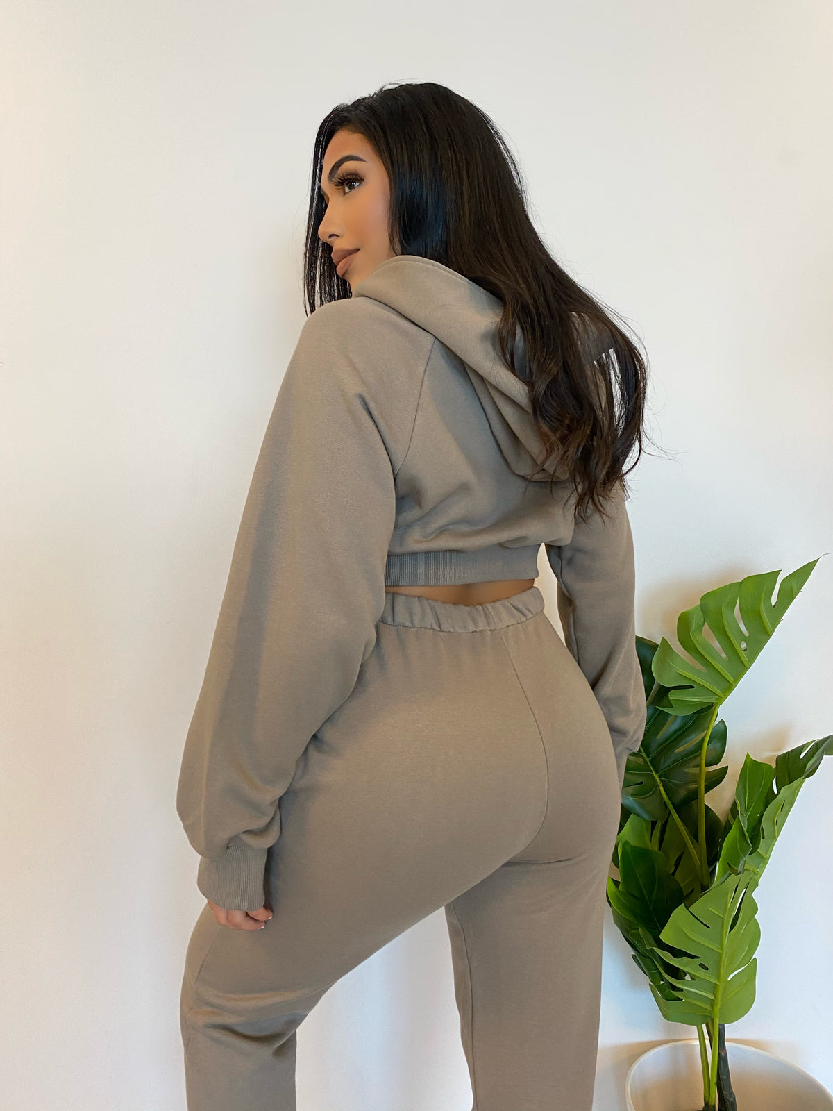 Ash jogger 2 piece, crop zip up hoodie, high waist joggers, 2 front pockets
