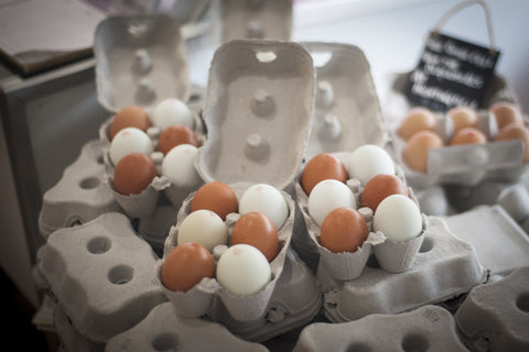 Blue and Brown free range eggs