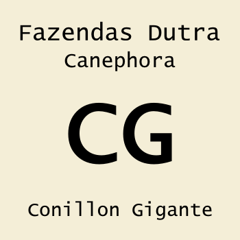 Conillon Gigante 250g