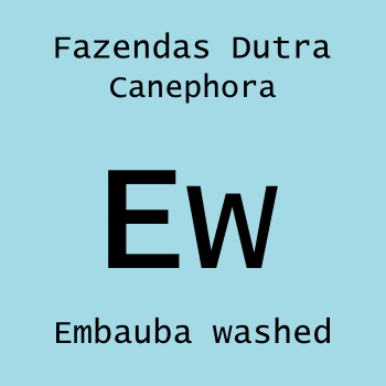 Embauba washed 125g