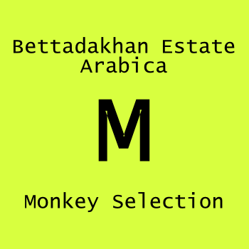 Monkey Selection 256g