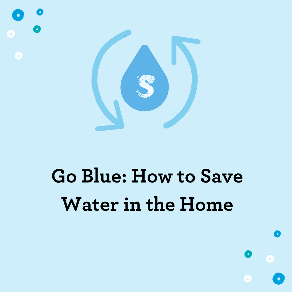 Go Blue: How to Save Water in the Home