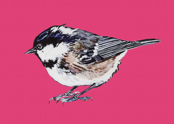 Artypants Greeting Card Coal Tit