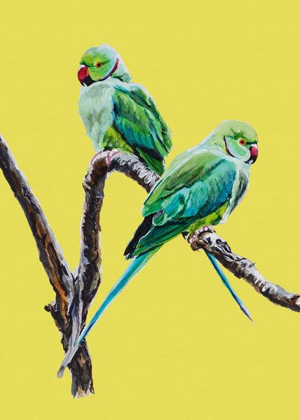 Artypants Greeting Card Rose Ringed Parakeets