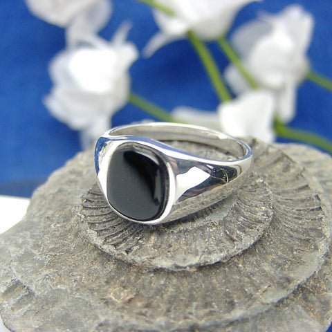 Mens Seal ring