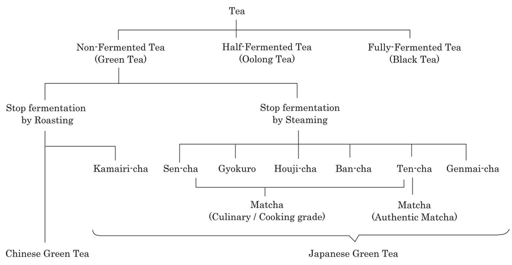 About Japanese Green Tea