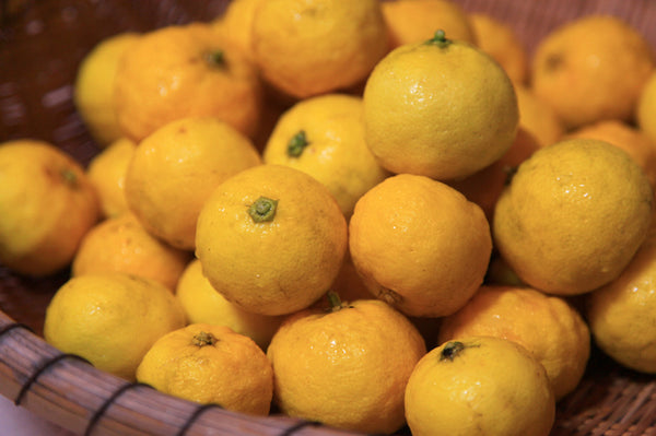 yuzu citrus fruit in Japan