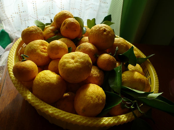 yuzu fruits in a basket.