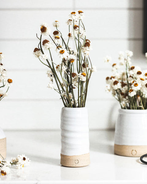 Daisy and Trunk Vase set on counter